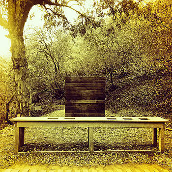 Table in the Woods by Barry Shereshevsky