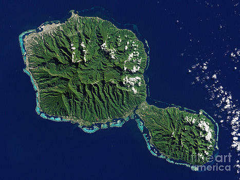Science Source - Tahiti