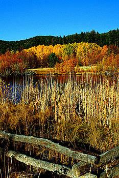 Lynn Bawden - Tahoe Pond