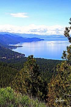 Lynn Bawden - Tahoe