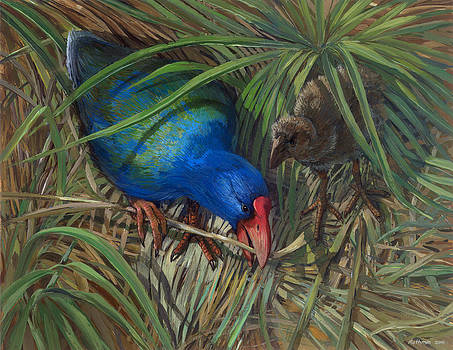 Takahe by ACE Coinage painting by Michael Rothman