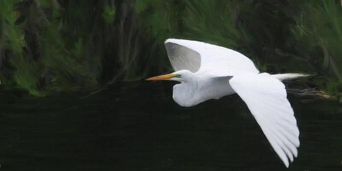 Taking Wing by Forest Stiltner
