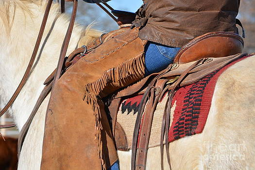 Tall in the Saddle I by Gale Cochran-Smith