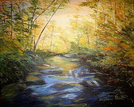 Tallulah River Color by Barbara Pirkle