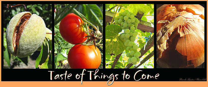 Taste of Things to Come photo collage by Brooks Garten Hauschild