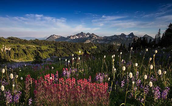 Larry Marshall - Tatoosh Mountain Range