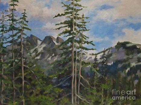 Tatoosh Mountains in Cascades by Karen Olson
