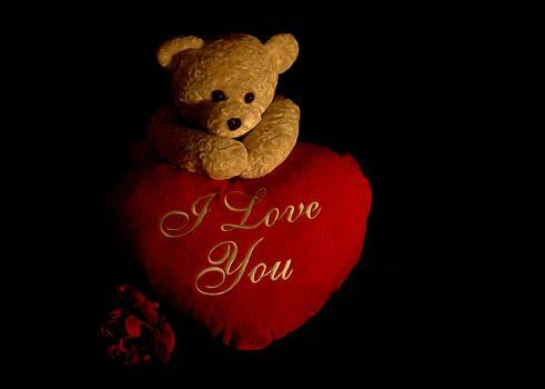 Regina  Williams  - Teddy Bear Love 2