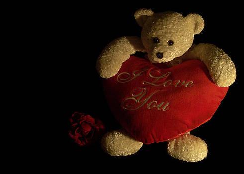 Regina  Williams  - Teddy Bear Love 3