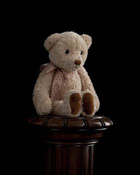 Teddy Bear by Marinus En Charlotte