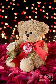 Teddy Love by Dolly Genannt