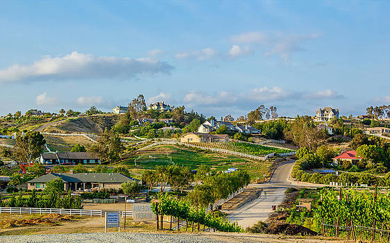 Temecula Valley by April Reppucci