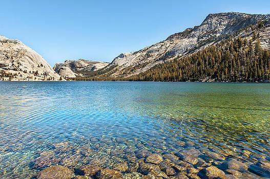 Tenaya Lake by Kay Price