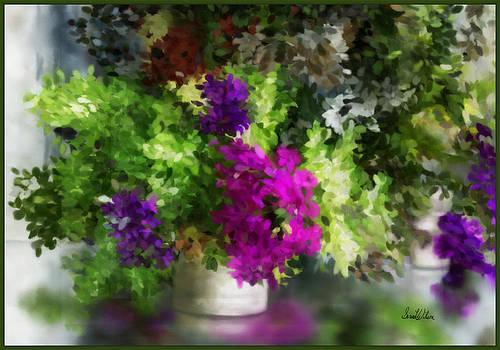 Teny's Orchids by Sena Wilson