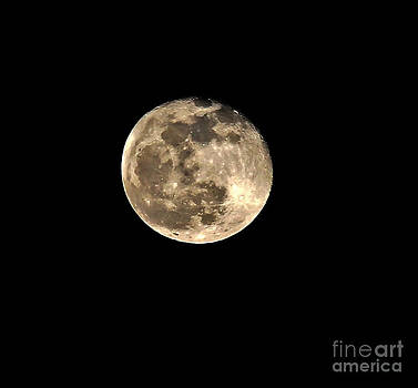 Teresa the Moon by Kip Krause