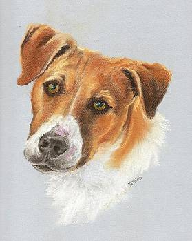 Terrier by Donna Teleis