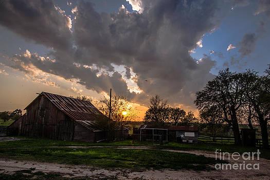 Texano Sky by Will Cardoso