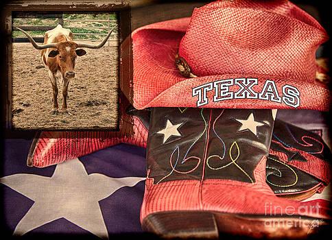 Texas by Erika Weber