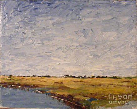 Texas Gulf Coast Wetlands by Steve Patton