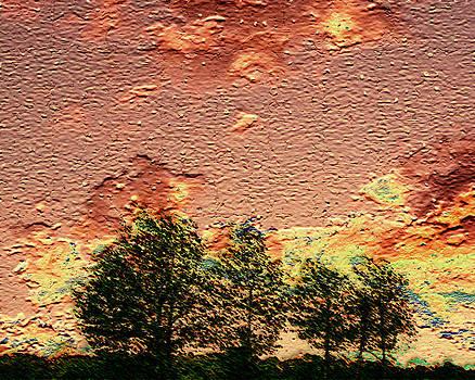 Textured Sky by Robert St Clair