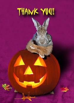 Jeanette K - Thank You Halloween Bunny Rabbit