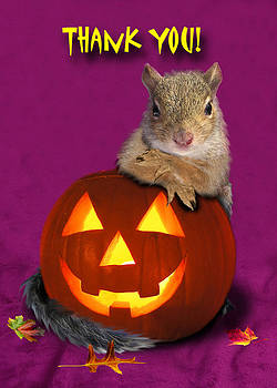 Jeanette K - Thank You Halloween Squirrel