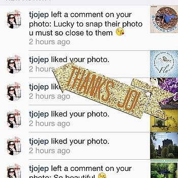 Thanks @tjojep For The Instalove Today! by Teresa Mucha