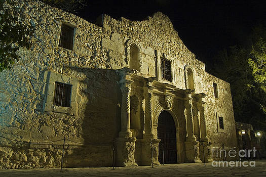 The Alamo by Margaret Guest