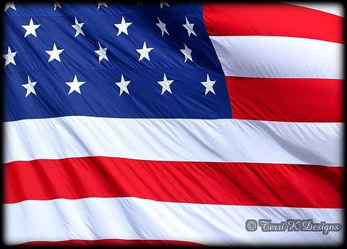The American Flag by Terri K Designs