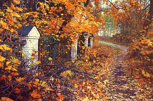 Jenny Rainbow - The Autumn Path Aside Old Fence