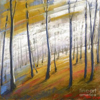 the Autumn by Viacheslav Rogin