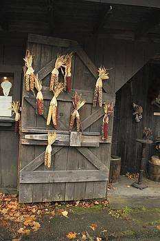 The Barn Door by Max  Greene
