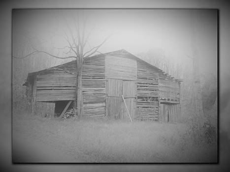 The Barn on North Union Road by Phil Penne