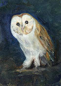 The Barn Owl by Carol Rowland