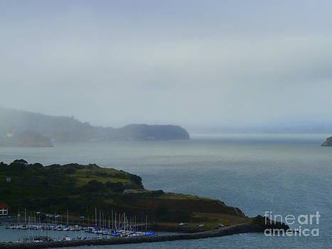 The Bay by Avis  Noelle