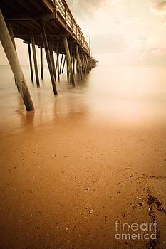 Lisa McStamp - The Beach