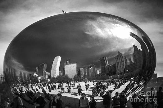 The Bean by F Icarus