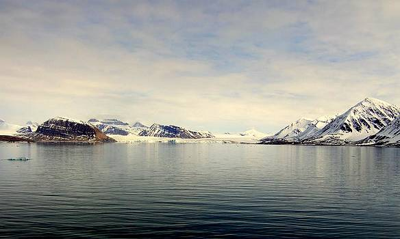 The Beauty of the Arctic by Bill Lighterness