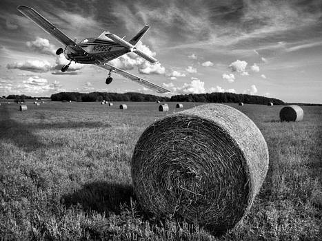 In the Field with hay   by Dorin Stef