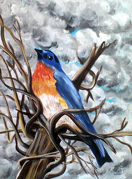 The bleu bird by Fatima Hameurlaine