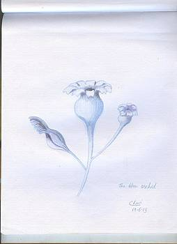 The Blue Orchid  by Archana Saxena