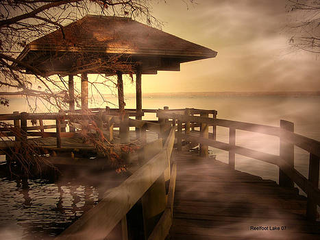 The Boardwalk of Reelfoot Lake by Bonnie Willis