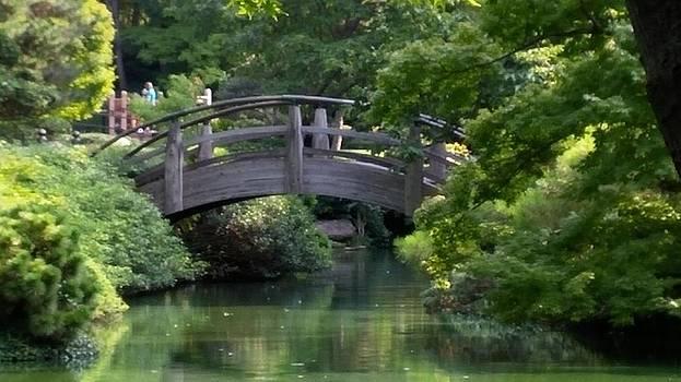 The Bridge by Shawn Hughes