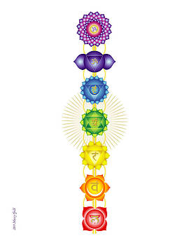 The Chakras by Marcy Gold