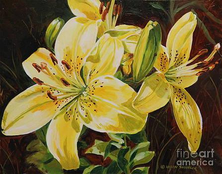 The Colour of Spring by Helen Shideler