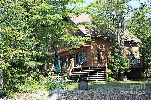 Steve Knapp - The Cottage