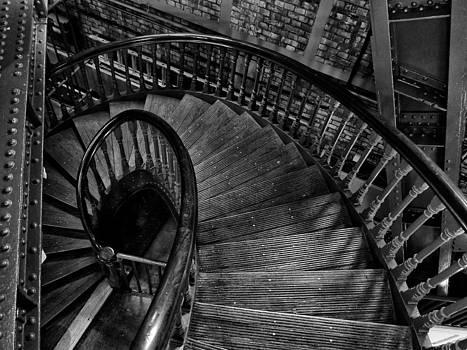 The Curve by Brian Orlovich