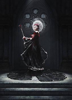 The Dark Queen by Melissa Krauss