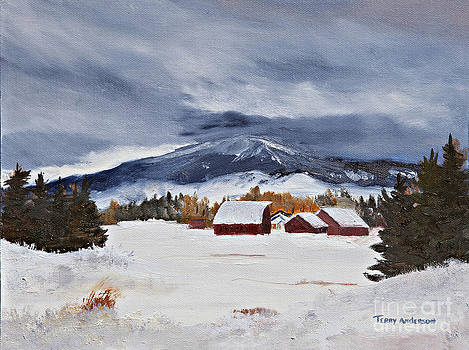 The Depth of Winter by Terry Anderson