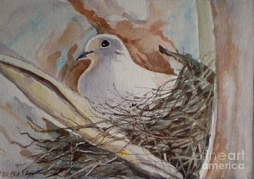 The Dove by Barbra Joan